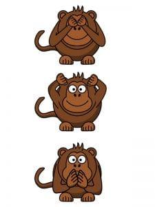 Public Address Announcer Monkey See Monkey Do