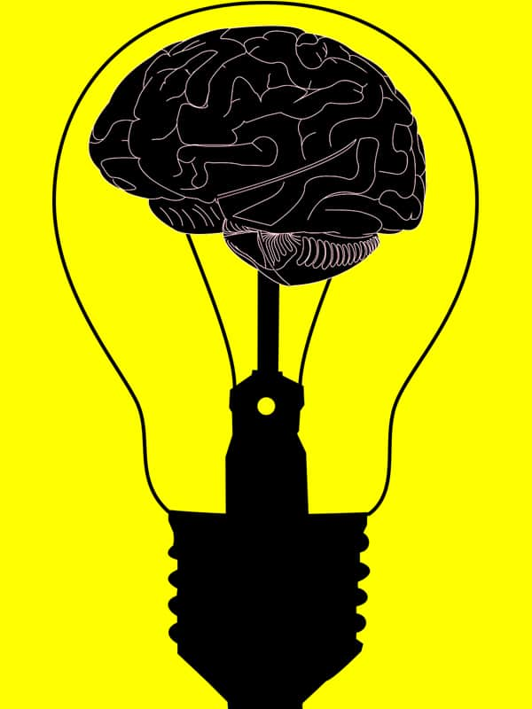 Public Address Announcer Brain